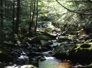Downstream from first falls